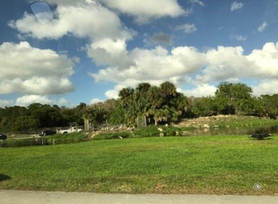 Loxahatchee, FL: photo2.jpg