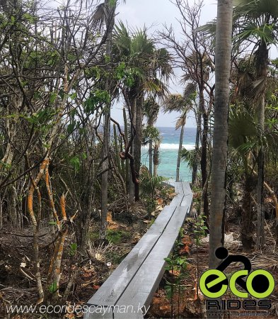 East End, Grand Cayman: Stairway to paradise.