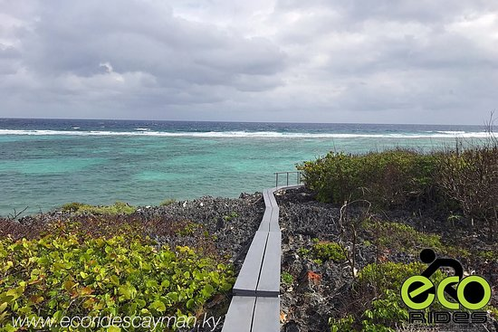 East End, Grand Cayman: Explore and learn something new everyday, this is the motto of of ECO Rides Cayman