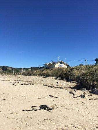 Kaka Point, New Zealand: photo3.jpg