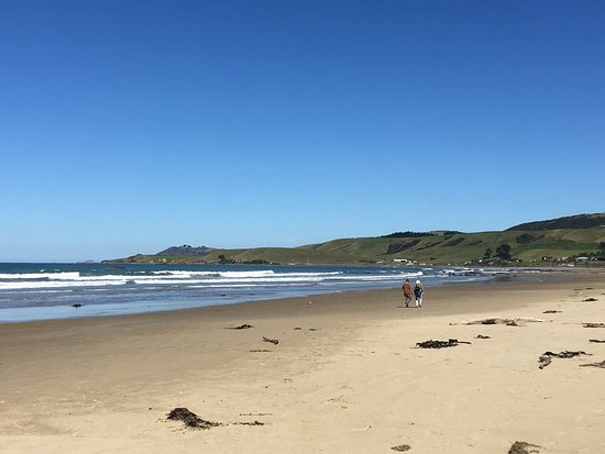 Kaka Point, Yeni Zelanda: photo5.jpg