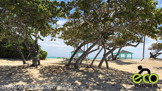 So much to see in East End. Come explore with ECO Rides Cayman.
