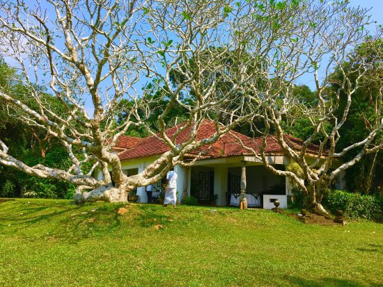 Bentota, Sri Lanka: photo5.jpg
