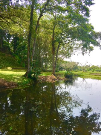 Bentota, Sri Lanka: photo9.jpg