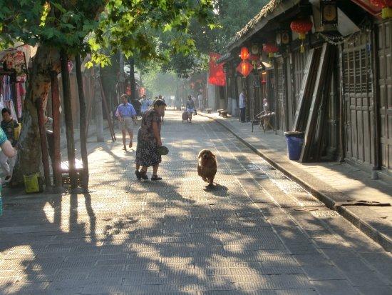 Langzhong Photo