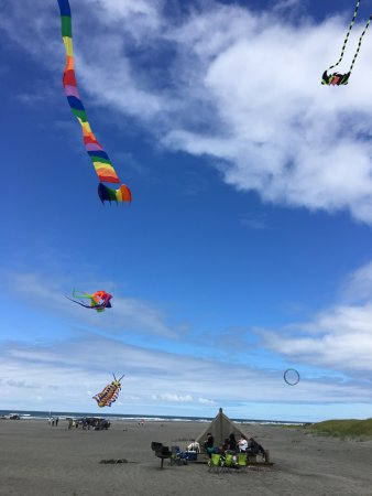 Long Beach, WA: Great place to fly a kite!