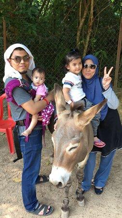 Port Dickson, Malaisie : IMG-20170318-WA0004_large.jpg