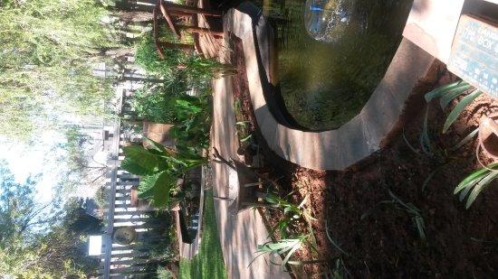 Klerksdorp, Sudáfrica: IMG-20170311-WA0002_large.jpg