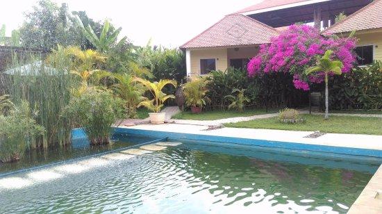 Au Cabaret Vert: La piscine