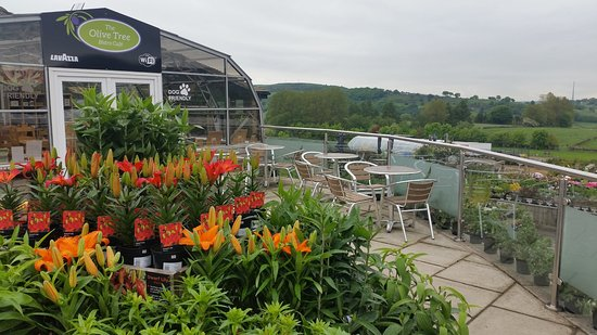 Holmfirth, UK: The Olive Tree Bistro Terrace with views over the Holme Valley