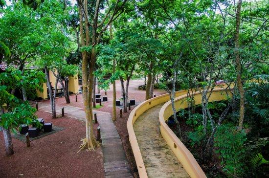Barberyn Beach Ayurveda Resort Photo
