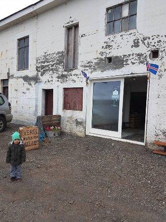 Hvammstangi, Islandia: In front of the store