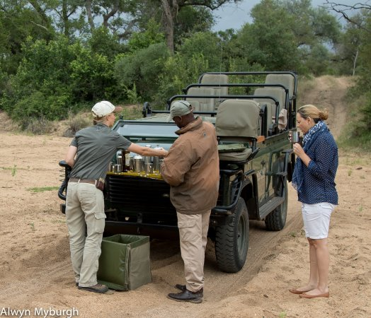Kings Camp: Enjoying a cuppa coffee deep in the African Bush!