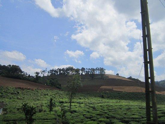 Kuttikkanam, India: kuttikanam