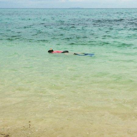 Denarau Island, Fiji: Snorkelling