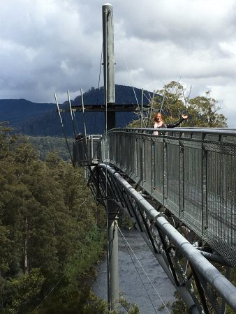 Tahune Forest AirWalk: The cantilevered part of the Airwalk