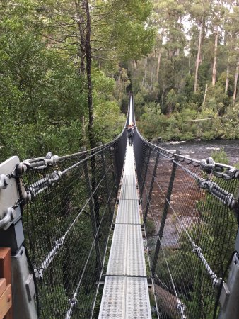 Tahune Forest AirWalk: One of the suspension bridges