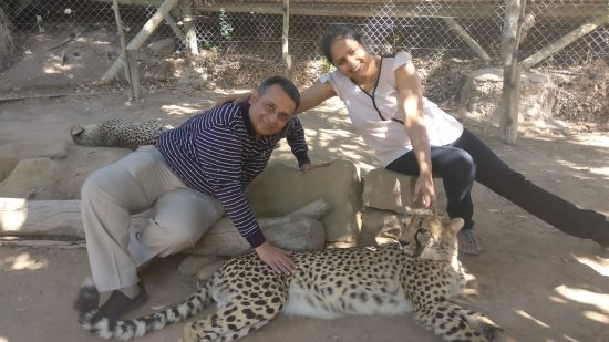 Cheetah Land and Crocodile Farm at Cango Wildlife Ranch South Africa Priyanka Manish Jain Kolkat