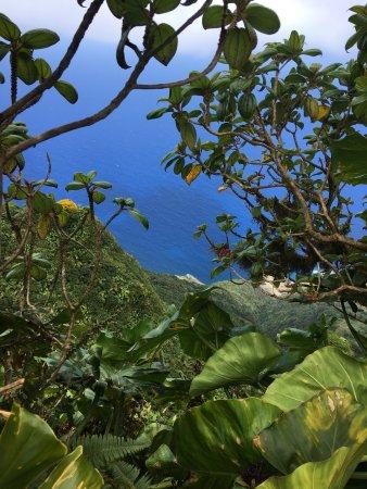 Windwardside, Saba: photo4.jpg