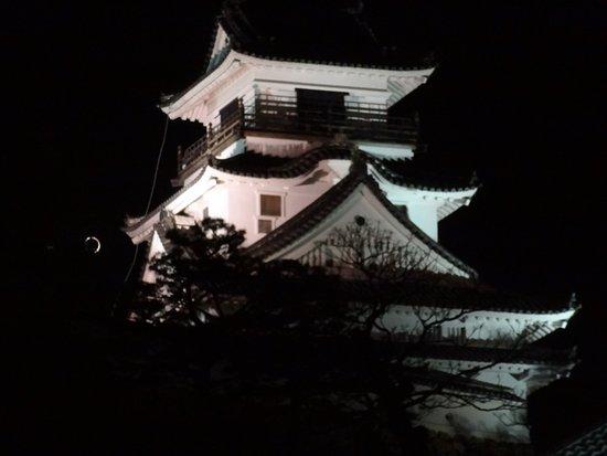 Kochi Castle: 高知城
