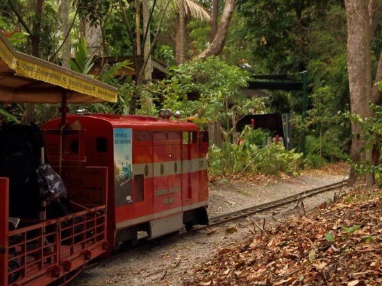 Currumbin, Australia: Park train