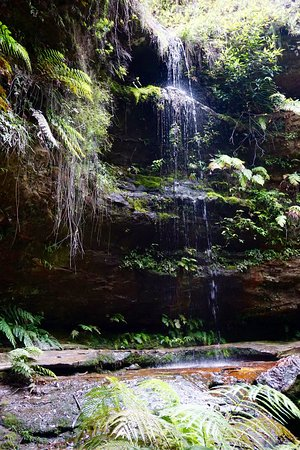 Lurline House: We did the Grand Canyon Walk, Blue Mountains.