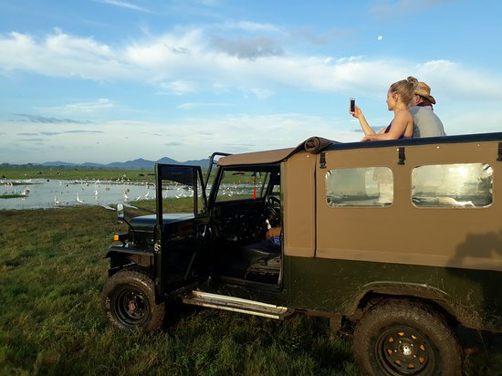 Tuk Tuk & Taxi Tours: Koudulla jungle keep safari http://www.tuktukandtaxitours.com/