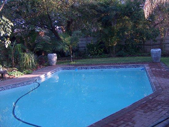 Pool - Picture of Stevenski's Guesthouse, Lephalale - Tripadvisor