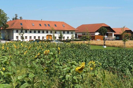 Ansfelden, Austria: Bauernhofpension Herzog zu LaahU
