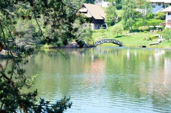 Il lago di costalovara picture of soggiorno alpino for Soggiorno alpino costalovara