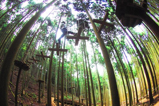 Forest Adventure Tamba Sasayama