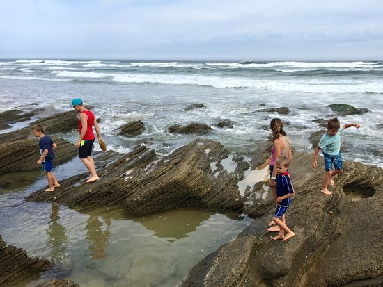 Brenton on Sea: Children playing in the tidal pools on the beach