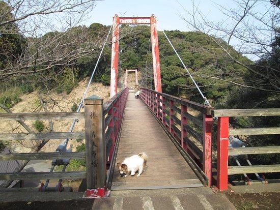 Tsubaki Park: 吊り橋