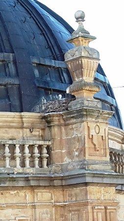 Scala Coeli Torres de la Clerecia: li le cicogne hanno nidificato