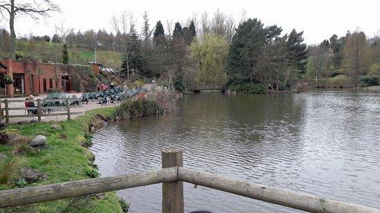 Wolverley, UK: Cafe and Lake