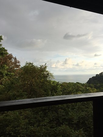 TikiVillas Rainforest Lodge: View from the balcony in the room