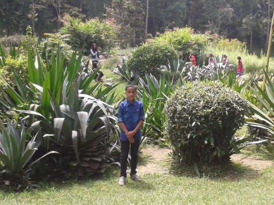 Yeti Trail Adventure   Day Tours: Botanical Garden In Godawari, Lalitpur  Tours