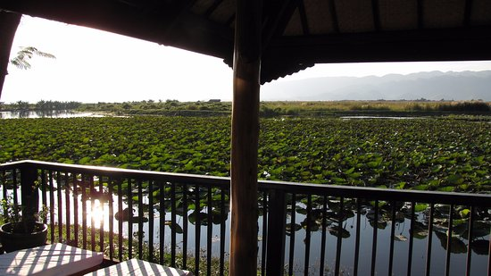Inle Princess Resort : View from Room 203