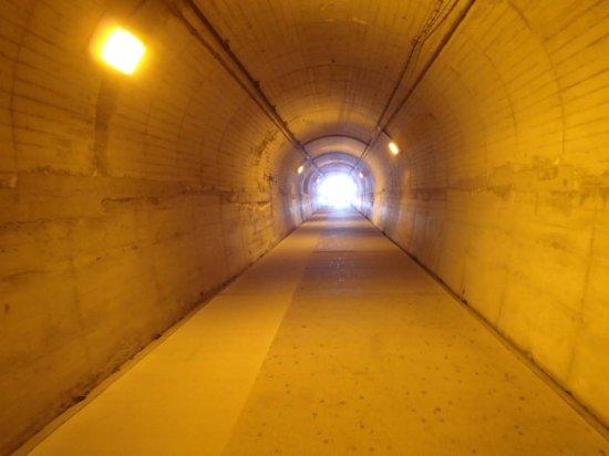 Udo Shrine: 途中、山の中に掘られたトンネルを通る
