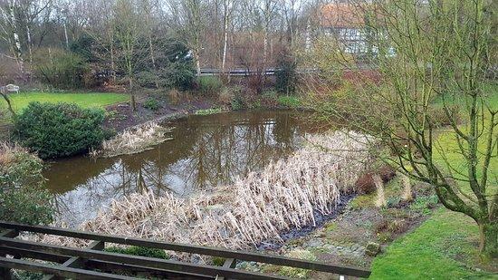 Peine, Germany: Blick aus dem Zimmer in den Park