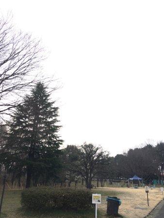 Higashimurayama, Japan: photo0.jpg