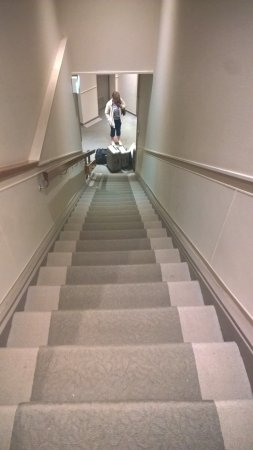 Wains Hotel Dunedin: The stairs you need to descend in order to reach the lift