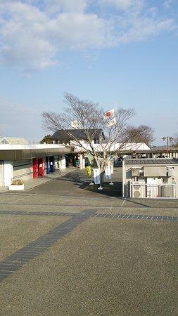 Makinohara, Japan: DSC_0995_large.jpg