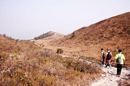 Pat Sin Leng Country Park : Beautiful sceneries