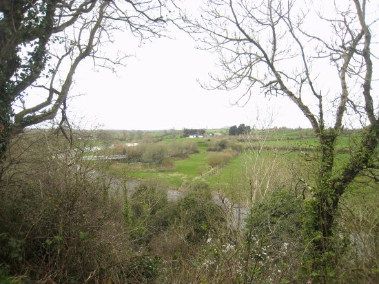 Donore, Ireland: Countryside spring