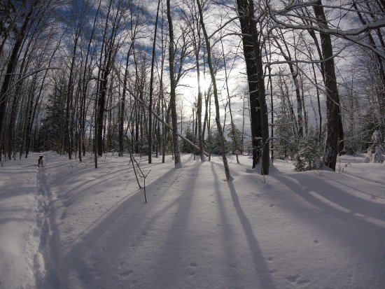 Horseshoe Valley, Kanada: photo2.jpg