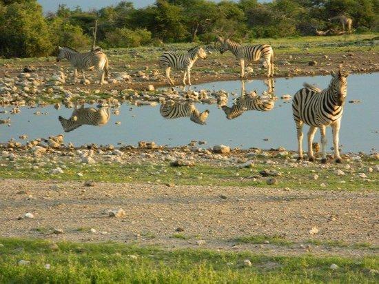 Windhoek, Namibia: photo2.jpg