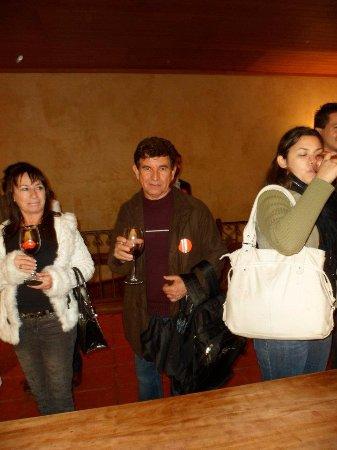 Pirque, Chile: Degustando vinhos.