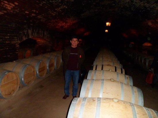 Pirque, Chile: Vinícola incrível.