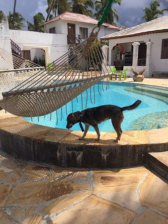 Palm Beach Inn: photo1.jpg